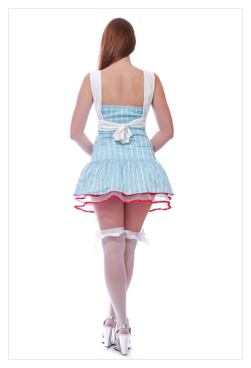 Ladies Adorable Dorothy Wizard of Oz Gingham Blue Fancy Dress Party Costume-1232