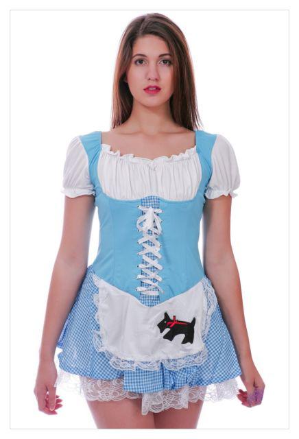 Alice in Wonderland Fancy Dress Christmas costume-991