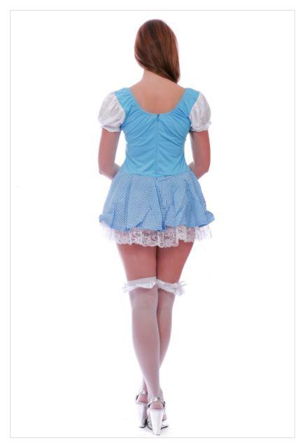 Alice in Wonderland Fancy Dress Christmas costume-988