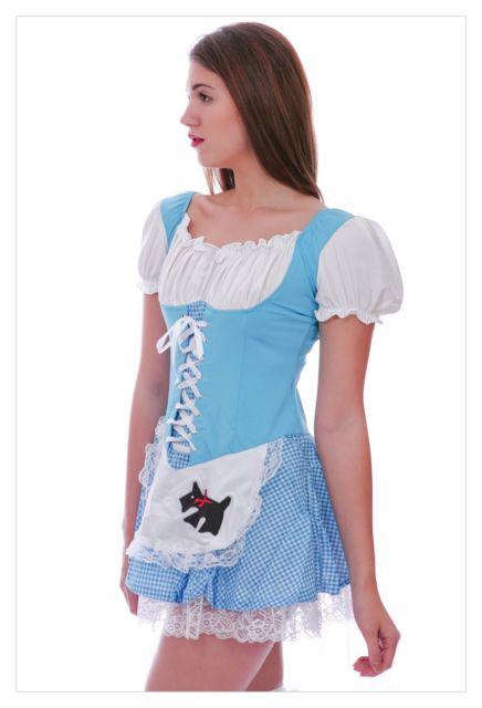 Alice in Wonderland Fancy Dress Christmas costume-987