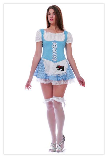 Alice in Wonderland Fancy Dress Christmas costume-990